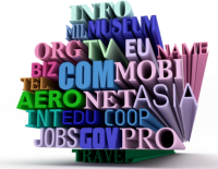 Domain Name Selection and Acquisition